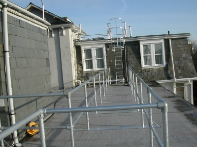 Galvanized Cat Ladder and Walkway Handrails
